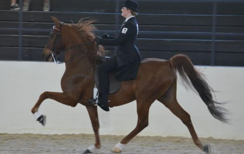 Allie Poovey takes the reins as a World Champion equestrian
