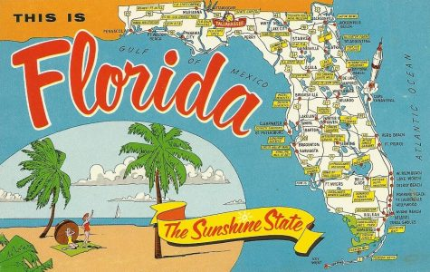 Rate the State: Florida