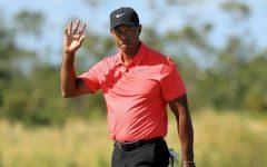 Tiger's Return