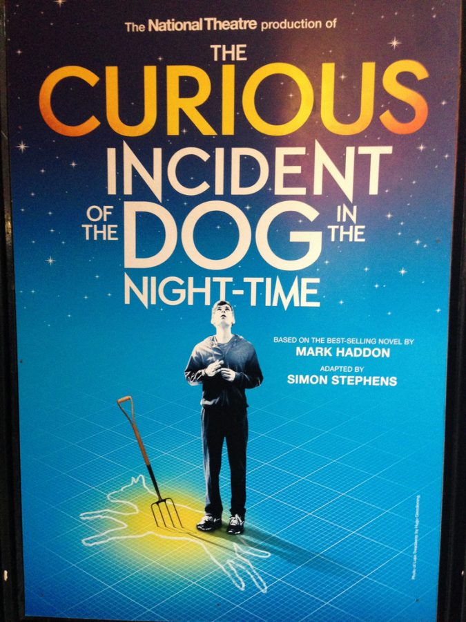 Willard Leads in The Curious Incident